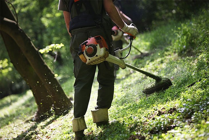 best weed wacker brands