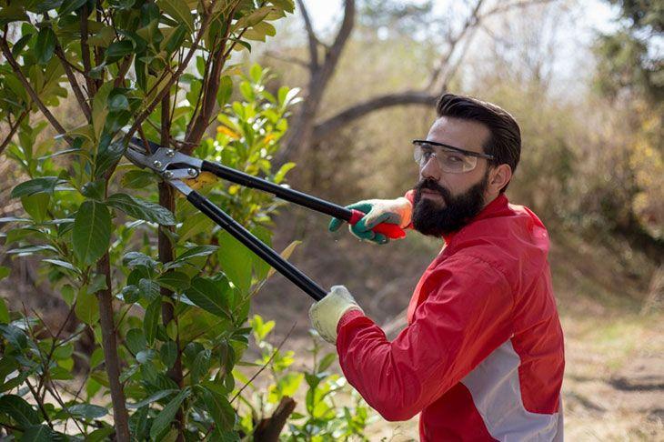 best garden multi tool system